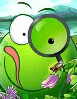 绿豆蛙之六十年生活变奏曲