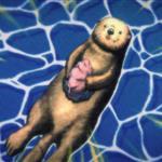 FREE!男子游泳部第二季剧照_壁纸_海报