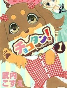 巧克力小狗